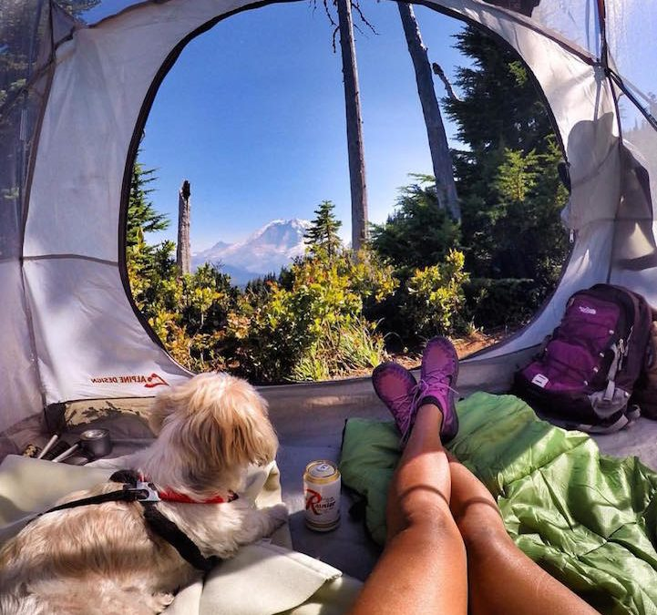 Top 5 Non-Traditional Camping Essentials