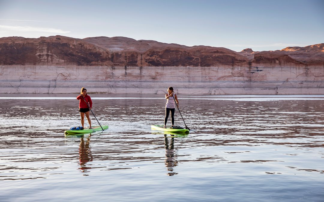 people paddleboarding
