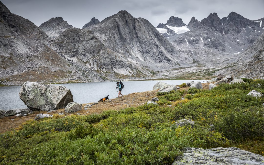 Hiking Essentials: How to Prep and What to Carry