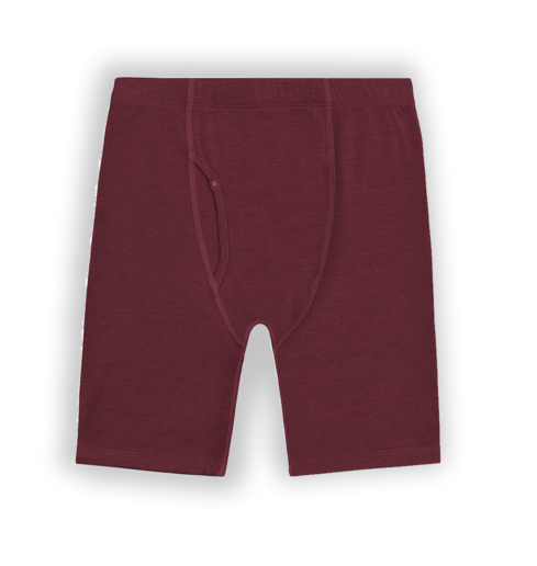 M's Ibex Woolies Tech Base Layer Boxer Briefs