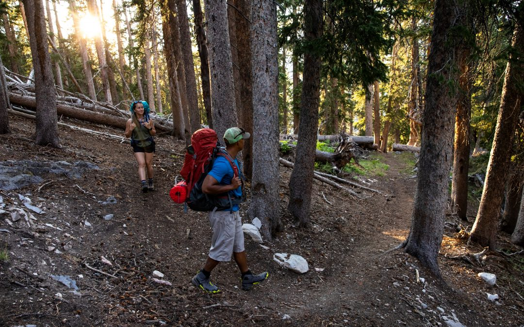 The Beginner's Guide to Hiking