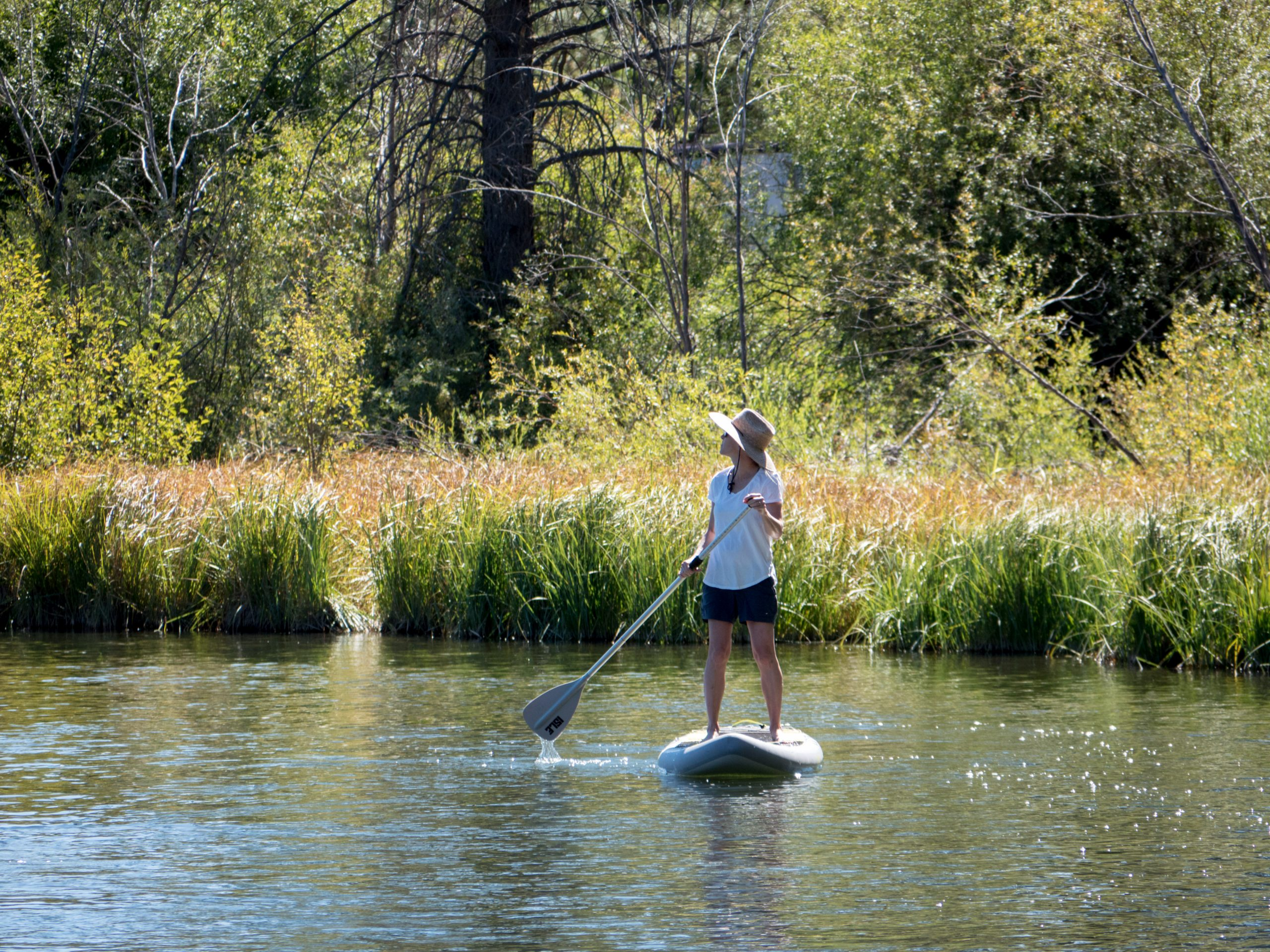 woman paddle boarding in water